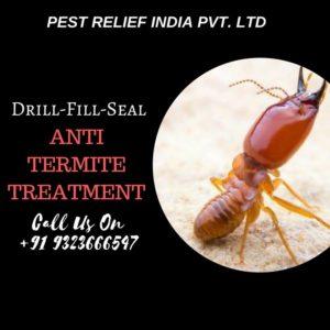 Pre-Construction Anti termite treatment