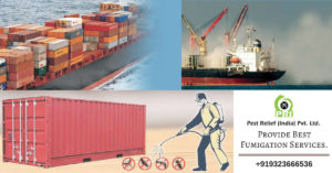 Ship Fumigation Services